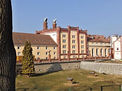 FOTKA - Zadní trakt pivovaru Regent založeného v r. 1379