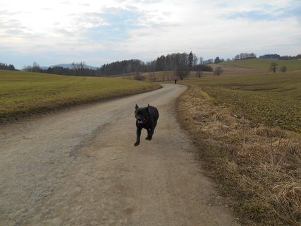 FOTKA - Běžím za tebou