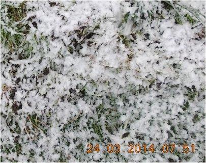 FOTKA - jarní sníh
