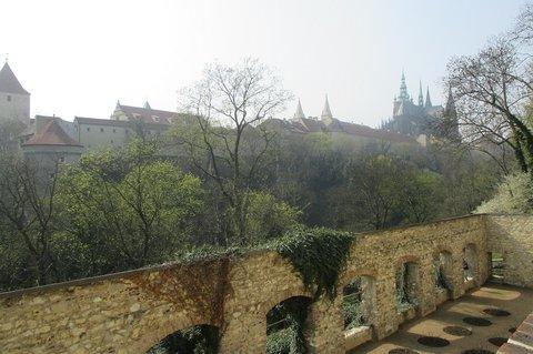 FOTKA - Pražský hrad zahájil letni sezónu -  s předstihem otevřená i  Královská zahrada