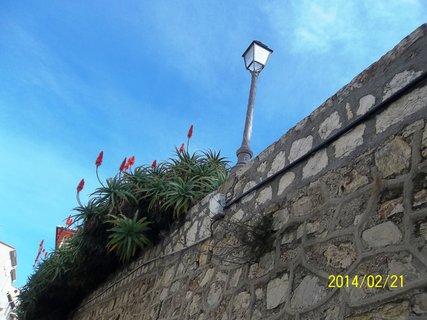 FOTKA - Antibes . . únor 2014