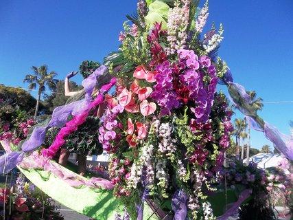 FOTKA - Nice ...květinový průvod