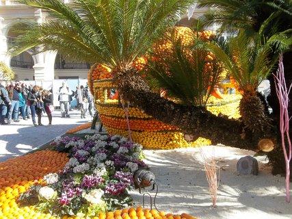 FOTKA - Slavnosti citrusů