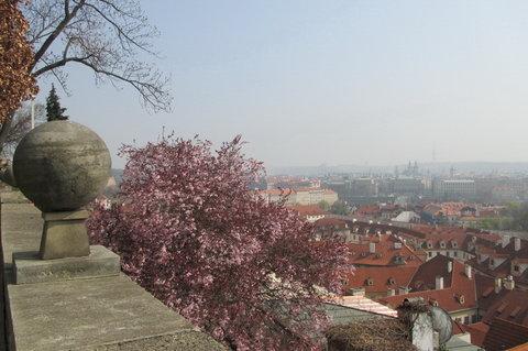 FOTKA - Ze zahrad pod Pražským hradem - kulatá ozdoba