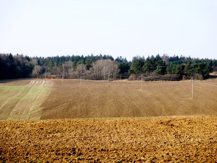 FOTKA - v polích