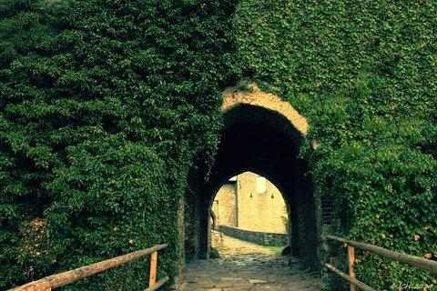 FOTKA - hrad Hukvaldy  ♥- 2.vstupní brána