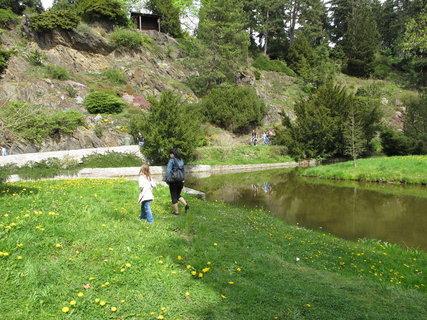 FOTKA - Pr�honick� park  - p�vodn� dom�c� d�eviny  jsou  dopln�ny  cizokrajn�mi d�evinami