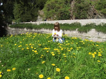 FOTKA - Průhonický park  -  se řadí do první desítky nejnavštěvovanějších kulturních památek u nás