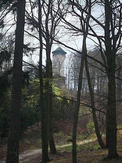 FOTKA - Pohled lesem k Dianě