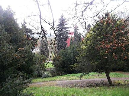 FOTKA - taky z parku v Klášterci / Ohří