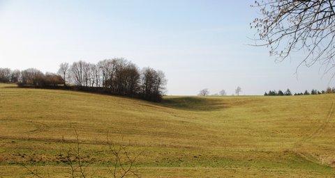 FOTKA - pastviny