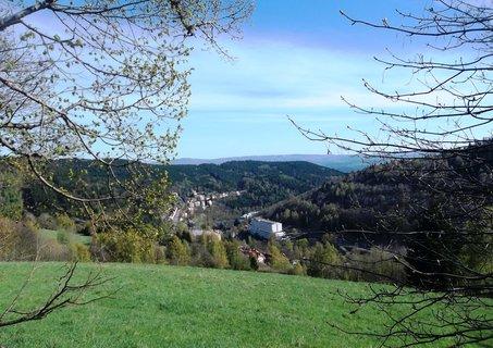 FOTKA - Pohled z kopce na Lázně Jáchymov