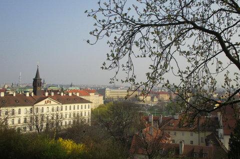 FOTKA - Svatováclavská vinice -  nepřehlédnutelná   Žižkovská věž