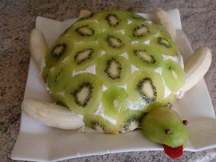 FOTKA - Nepečená želva s kiwi