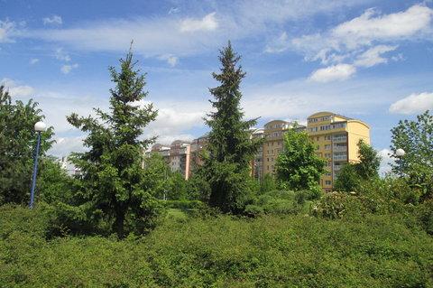 FOTKA - Park p�ed obchodn�m  centrem - se  stromy v�eho druhu