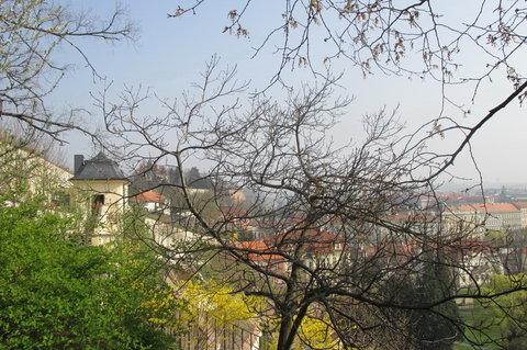 FOTKA - Ze zahrad pod Pražským hradem , březen:  stromy ještě výhledu nebrání