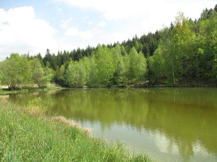 FOTKA - a znovu rybník