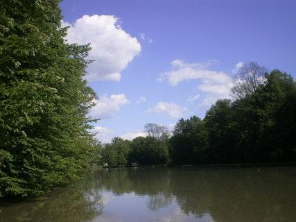FOTKA - Pohled na velký rybník
