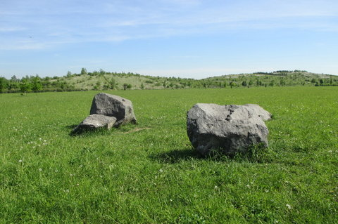 FOTKA - Lesopark  - cestou kolem kamenů