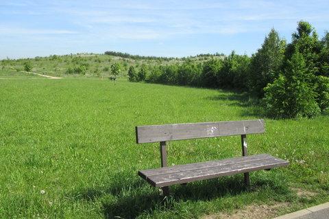 FOTKA - Lesopark  -  místo pro odpočinek