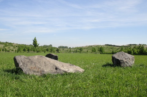 FOTKA - Lesopark  -  další kamínky