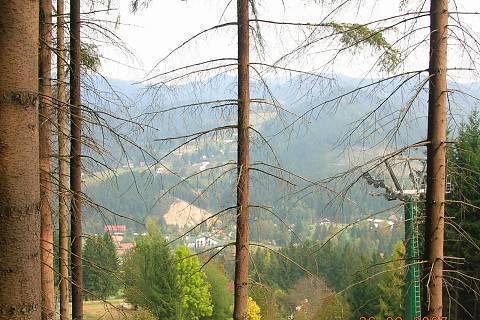 FOTKA - Horní Bečva 2007