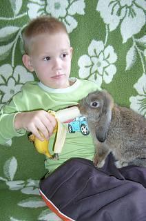FOTKA - Daneček s králíčkem
