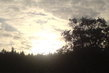 Slunce zapadá za les