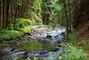 v náručí přírody - naučná stezka údolím Doubravy