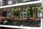 Balkonek plný květin kousek od Notting Hillu