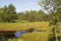 rašeliniště kolem Velkého Dářka - 2)