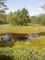rašeliniště kolem Velkého Dářka - 3)