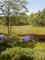 rašeliniště kolem Velkého Dářka