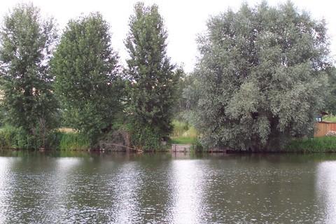 FOTKA - Pohled přes vodu III