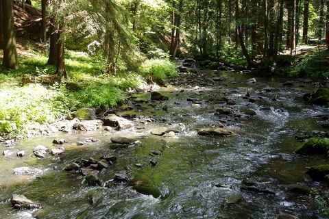 FOTKA - voda voděnka, hladí oblázky - naučná stezka údolím Doubravy
