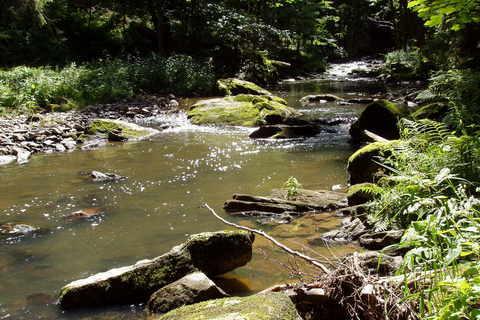 FOTKA - naučná stezka údolím Doubravy **