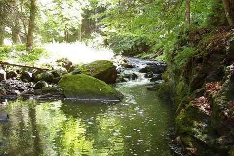 FOTKA - řeka Doubrava - 1)