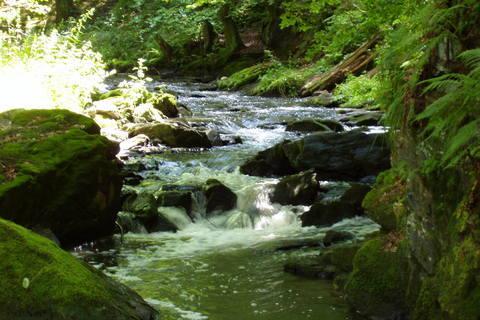 FOTKA - řeka Doubrava *1*