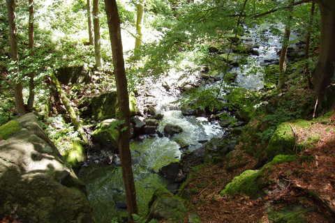 FOTKA - řeka Doubrava *6*
