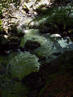 FOTKA - řeka Doubrava *5*