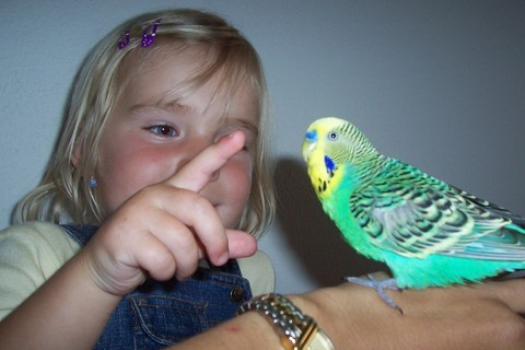FOTKA - S ptáčkem