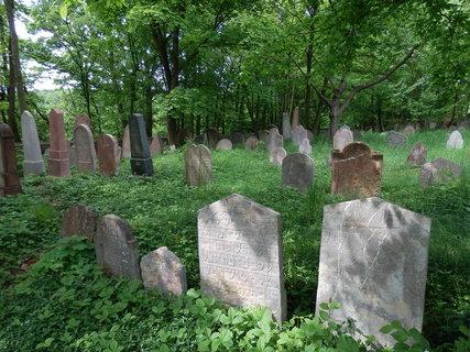 FOTKA - restaurované náhrobky na historicky cenném žid. hřbitově v Litni