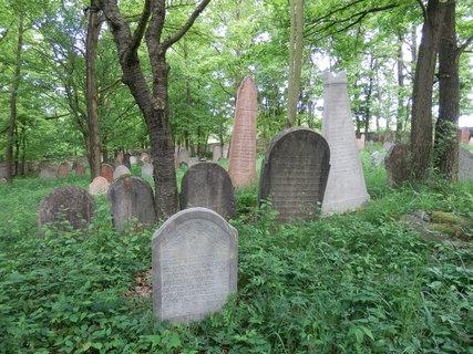 FOTKA - židovský hřbitov u Litně / článek čeká na schválení