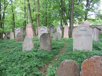 FOTKA - na židovském hřbitově u Litně můžeme obdivovat na 300 náhrobních kamenů různého stylu (většina v posledních letech restaurována).