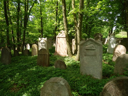 FOTKA - zachovalý a působivý židovský hřbitov u Litně