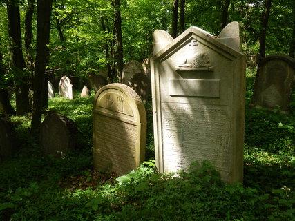 FOTKA - židovský hřbitov Litni - článek bude zítra
