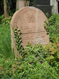 FOTKA - židovský hřbitov Litni - článek bude zítra, 17.6.