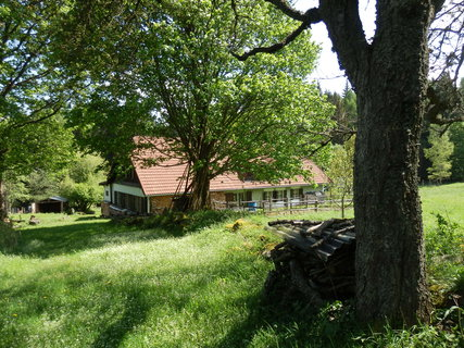 FOTKA - toulání Šumavou, samoty kolem Borových Lad