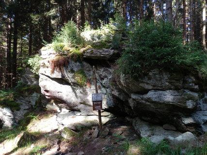 FOTKA - šumavské toulání,Světlá hora (1123 m) značky sem sice nevedou, ale vrcholová kniha tu je