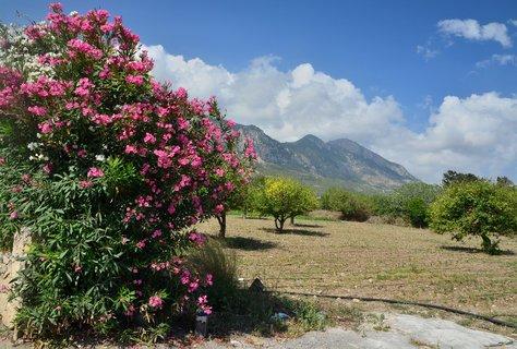 FOTKA - Krajina severního Kypru